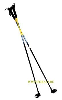 Палки лыжные стекловолокно, 110 см - фото 11686