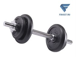 Гантель сборная Lite Weights 9.43 кг х 1шт - фото 16538
