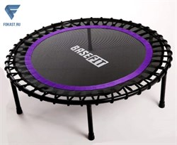 Батут BaseFit TR-501 101см, фиолетовый (УТ-00017774) - фото 18100