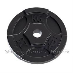 Диски чугунные для штанги EURO-CLASSIC d-26 2,5 кг - фото 6667