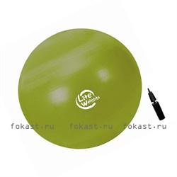 Мяч гимнастический Lite Weights d-65см (с насосом) - фото 6830