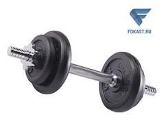 Гантель сборная Lite Weights 9.43 кг х 1шт