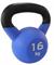 Гиря чугунная с виниловым покрытием SportElite 16 кг, матовая - фото 18306